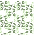 Seamless pattern leaves of green pepper vector image vector image