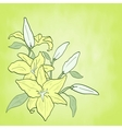 background with green flower lily spring theme vector image vector image