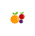 gear fruit logo icon design vector image vector image