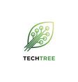leaf symbol vector image vector image