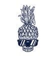 pineapple skull in sunglasses design element vector image