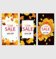 autumn sale banner template vector image