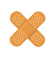 adhesive medical plasters bandage cross icon vector image vector image