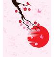 cherry blossom birds vector image vector image