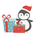 cute penguin with gift boxes celebration merry vector image vector image