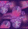 exotic tropical vrctor background with hawaiian vector image