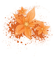 flowers with blotches vector image