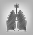 human anatomy lungs sign pencil sketch vector image vector image