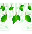 leaves on ropes vector image vector image