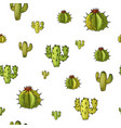 seamless pattern with cactuses trendy vector image vector image