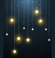 star hanging in starry night vector image vector image