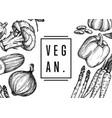 vegan food hand drawn banner vector image vector image