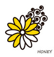 summer honey flower with curls floral element vector image