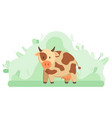farming and livestock animal milk cow or cattle vector image