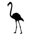 Flamingo Birds Silhouettes vector image vector image