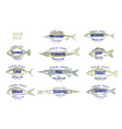 hand drawn of fish with names in vector image vector image