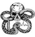 human skull and snake black and white tattoo vector image