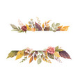 watercolor autumn banner with roses and vector image vector image