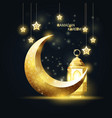 crescent and lantern ramadan kareem islamic vector image