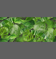 jungle foliage seamless pattern 3d realistic vector image