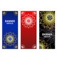 golden elements mandala on dark red blue vector image vector image