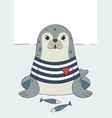 seal cute sea lion animal in sailor t-shirt vector image