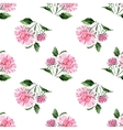 Watercolor aster pattern vector image