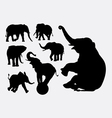 Elephant animal silhouettes vector image vector image