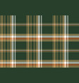 green pixel plaid fabric seamless pattern vector image vector image