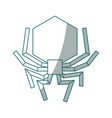 isolated hacker virus spider vector image