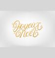 joyeux noel 2020 hand written lettering vector image vector image