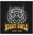 Night Owls - sport team Head mascot vector image