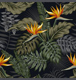 night tropical seamless pattern plants and flowers vector image