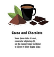 banner with cocoa powder chocolate bar cocoa vector image