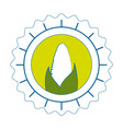 isolated corn round icon vector image