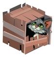 Sad cartoon gray kitty in wooden box vector image vector image