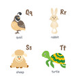 animal alphabet with quail rabbit sheep turtle vector image vector image