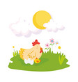 cute hen chicken and eggs flowers grass sun farm vector image vector image