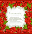 frame from red roses vector image
