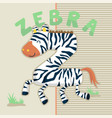 funny zebra cartoon vector image