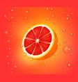 grapefruit juice background vector image