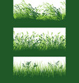 green grass meadow border wallpaper vector image vector image