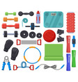 home fitness equipment sport training accessories vector image vector image