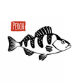 Perch black and white vector image vector image