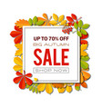 sale banner with bright autumn leaves isolated on vector image