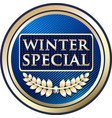 winter special icon vector image vector image