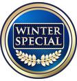 Winter special icon