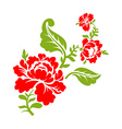 Rose on branch on white background Isolated floral vector image