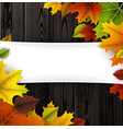 autumn background with colorful leaves vector image vector image