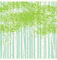 birch grove background against the blue sky vector image